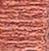 TULIPIER ROSE